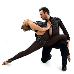 LA salsa week Blogs WebDanceTV