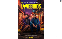 Romantic Sitcom THE LOVEBIRDS will be Streaming on Netflix now