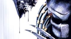 aliens vs predator wallpapers