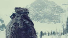 The Revenant Wallpapers Wallpapers High Quality