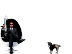 Wallpapers white dog actor will smith men in black 2 ii