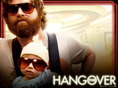 zach galifianakis hangover Wallpapers HD Wallpapers