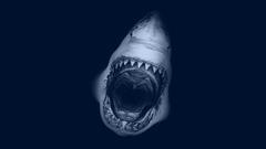 Jaws Movie Poster desktop wallpapers