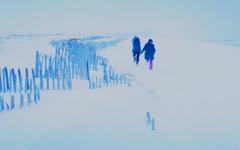 Eternal Sunshine Of The Spotless Mind Wallpapers Wonderful 29