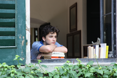 Wallpapers Call Me by Your Name Timothee Chalamet 5k Movies