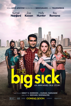 The Big Sick Details and Credits