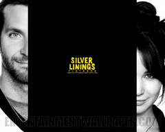 Silver Linings Playbook Wallpapers and Backgrounds Image