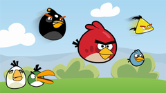 Cool And Beautiful Angry Birds WallpapersPhotography Heat
