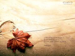 Christian wallpapers Bible verses 04wallp82