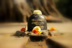 How Did Shiva linga Evolve