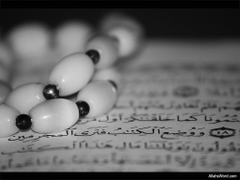 The Noble Quran Wallpapers