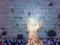 MY WAILING WALL The Sacred Places Series SHIFTPARADIGM