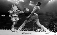 Hitmonchan v Ali pokemon