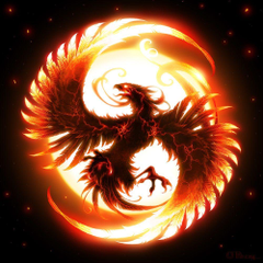 I see this when Moltres uses sky attack