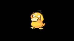 Psyduck Wallpapers