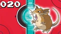 Pokémon Visual Pokedex