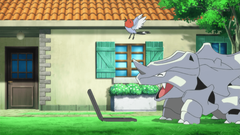 Rhyhorn and Fletchling watching on a laptop