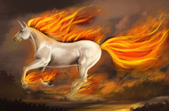 Unicorn wallpapers and image wallpapers pictures photos