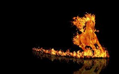 Fiery wallpapers