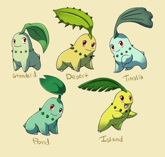 Pokemon Subspecies Chikorita by CoolPikachu29