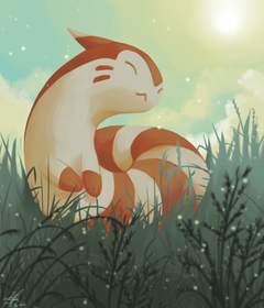 Day13 NORMAL Furret by Rock