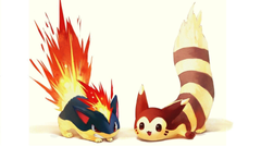 Pokemon fire artwork typhlosion quilava wallpapers