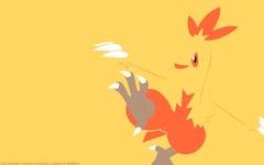 Combusken Pokemon HD Wallpapers