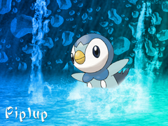 Piplup Wallpapers