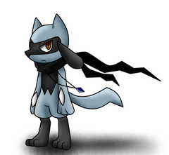 Name Zero Species Riolu Gender male Level 2 Sexuality