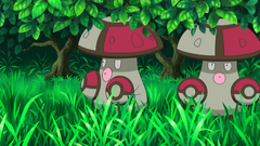 of The Most Useless Pokemon In The History of The Franchise