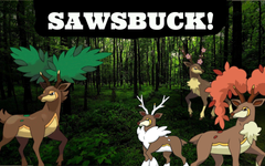 Sawsbuck Pokemon XY Moveset