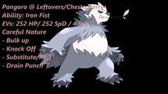 Pokemon Review Pangoro