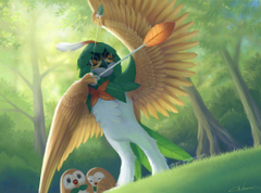Decidueye to the rescue by Blunell