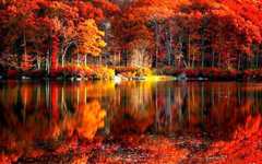 fall Foliage River Autumn Red Lake Reflections Shore Beautiful Serenity Trees Calmness Wallpapers HD Desktop and Mobile Backgrounds