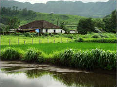 Landscape from rural India Karjat Nature HD wallpapers