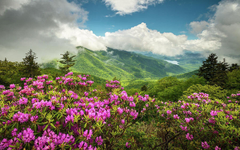 Blue Ridge Mountains Fall Wallpapers