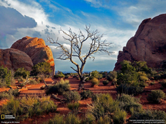 Arches National Park Picture Travel Wallpapers