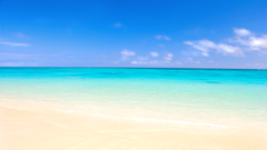 Bondi Beach Ultra HD 4K Wallpapers Travel HD Wallpapers