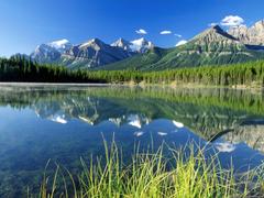 Desktop Wallpapers Natural Backgrounds Herbert Lake and Bow