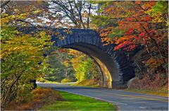 Blue Ridge Parkway North Carolina Blue Ridge Parkway North Carolina