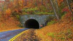Other Tunnel Blue Ridge Mountains Autumn Colorful Falling Leaves