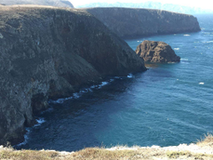 Exploring Channel Islands National Park