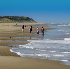 Joe s Retirement Blog Marconi Beach Cape Cod National Seashore