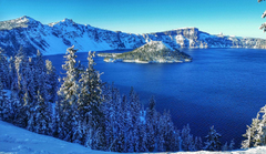 Image USA Crater Lake National Park Nature Spruce Winter Snow Parks