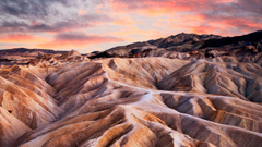 Joshua Tree and Death Valley National Parks Conservation Association