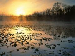 Nature Cuyahoga Valley National Recreation Area At Sunrise Ohio