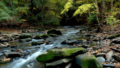 Cuyahoga Valley National Parks Conservation Association