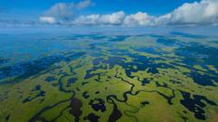 Aerial view Everglades National Park Florida USA
