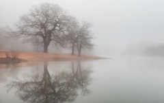 Foggy Wallpapers