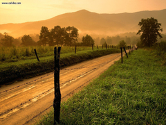 Nature Sparks Lane At Sunset Cades Cove Great Smoky Mountains